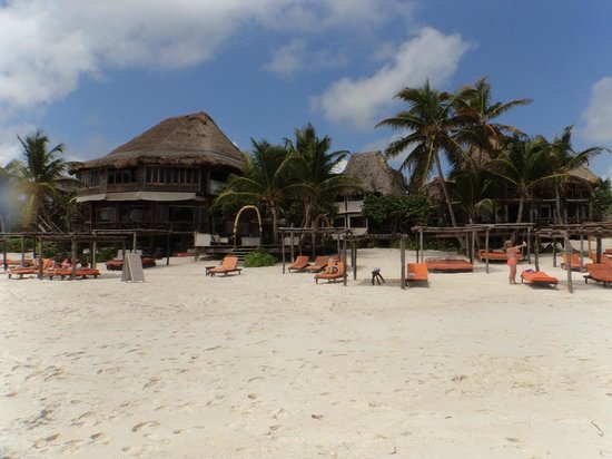 Amansala Eco-Chic Resort + Retreat: from the waters edge