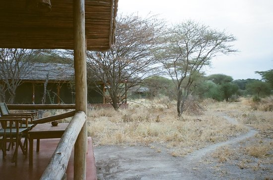 Kirurumu Tarangire Lodge: Open wildlife viewing area in front of personal lodge