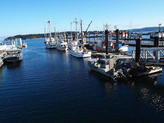 Harbourfront Walkway: Ships in the harbor