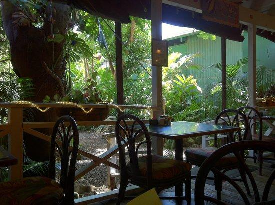 Tropical Low Key Kauai Dining Picture Of Tomkats Grille Koloa