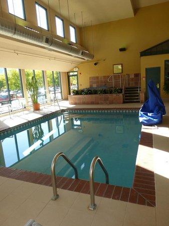 Boulder Marriott: small indoor pool