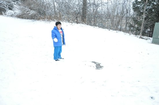 Residence Inn Appleton: hotel backyard.. my son playing the snow..