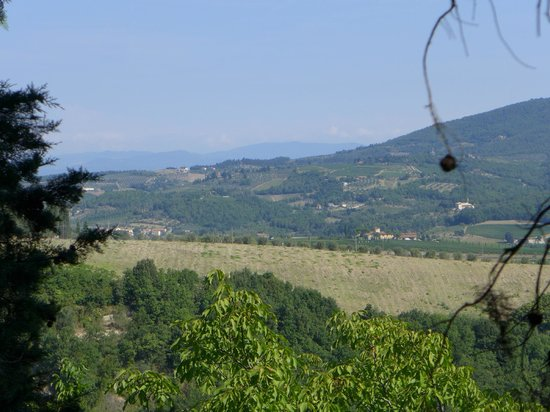 Tuscany in Tour: Beautiful countryside