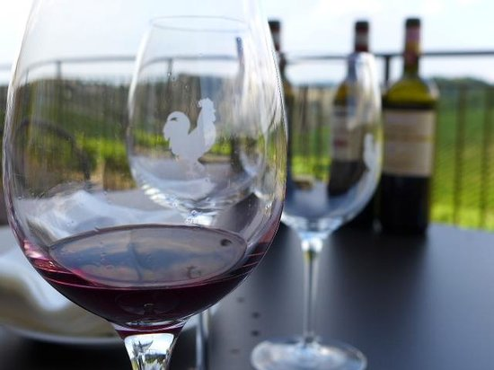 Tuscany in Tour: Great wine tasting