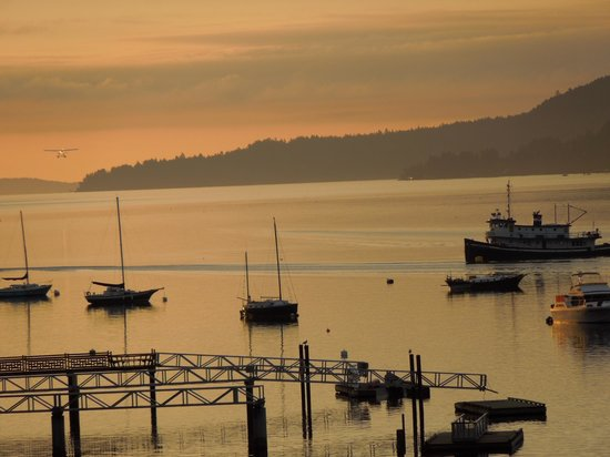 Hastings House Country House Hotel: Ganges Harbor activity