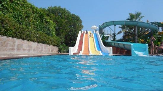 Paloma Oceana Resort: tobbogans