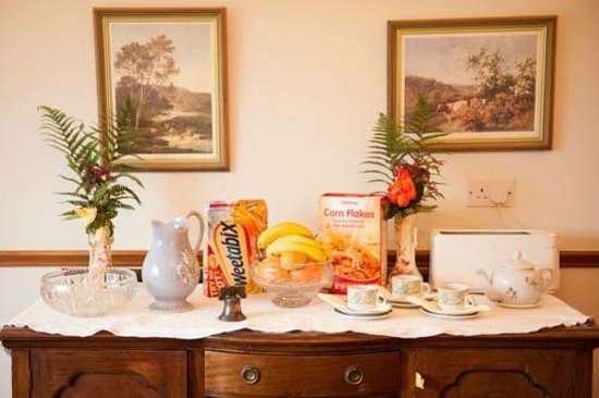 Fort House B & B : Breakfast bar