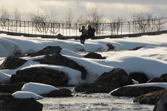 Northern Lights Husky Day Tours: Ved Mollisjok fjellstue