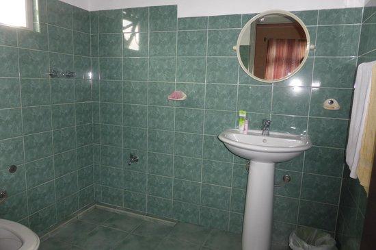 Carnation Rest : バスルームも清潔