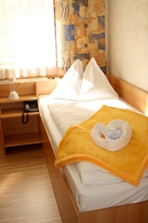 Hotel Franzenshof: example single room