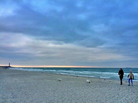 Udsigt fra stranden ved foden af bakken med Vippefyret. Fyret og Grenen mod nordøst...