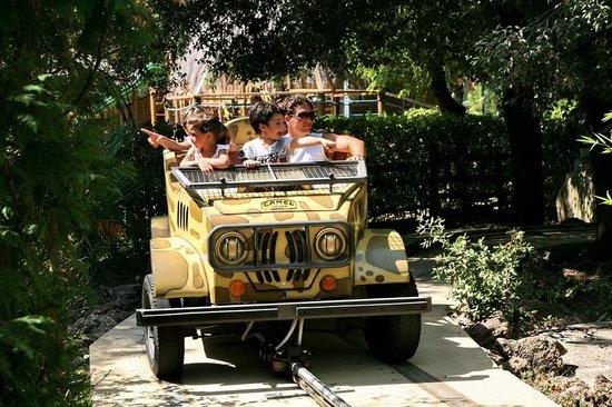 """Cavallino Matto: Come un vero safari """" a bordo della jeep"""""""