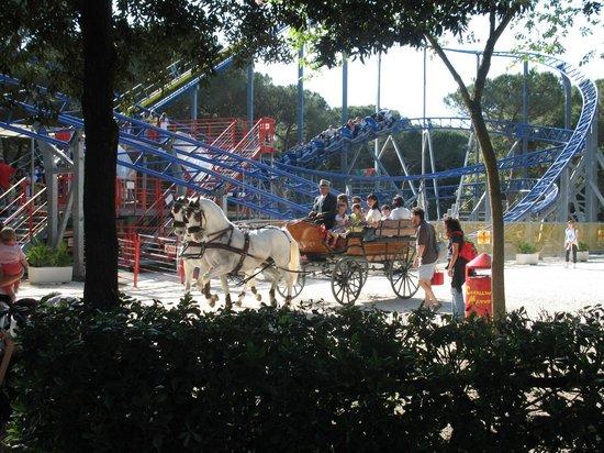 Cavallino Matto: A cavallo nel Parco