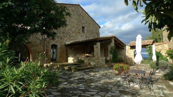 Romitorio di Serelle : One of the terraces