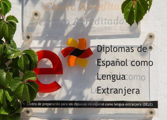 Escuela Carmen de las Cuevas: Excellent language and flamenco classes