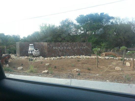 Ngwenya Lodge: The entrance
