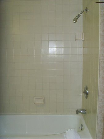 DoubleTree by Hilton Modesto: Shower over the bath
