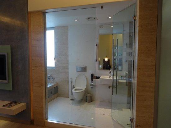 Residency Hotel Andheri: bath again