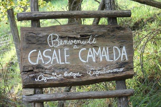 Casale Camalda - Organic Farm: il benvenuto