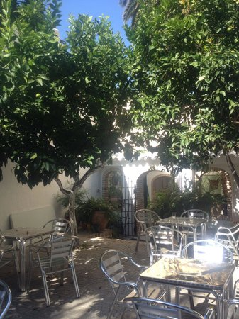 Zuheros, Spain: Shady patio to keep you cool while you devour the best cheese in andalucia.