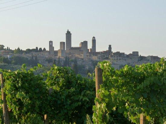Fattoria Guicciardini: San Gimignano