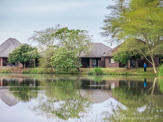 Ngwenya Lodge: A view of the units around the 'lake'