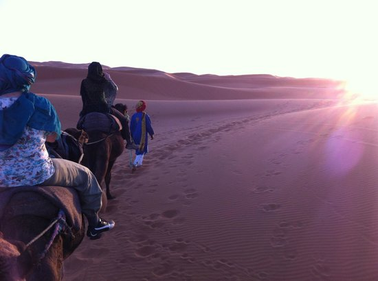 Kasbah Bivouac Lahmada: Camel trek