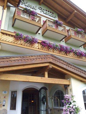 Family Wellness Hotel Renato : Ingresso