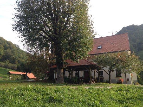 Tourist Farm Zelinc : Maggio 1992 merenda ore 17,30 ottima.     Ottobre 2013 soggiorno 5 notti perfetto. L'unico posto
