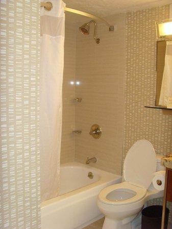 Holiday Inn San Francisco Golden Gateway : Shower over the shallow bath