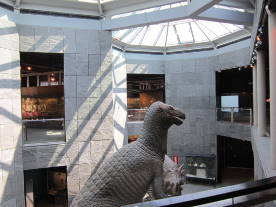 Museum of Natural History: T Rex lurking in the backfground
