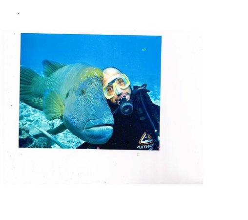 Sunlover Reef Cruises: my under water pet friend at Moore, Reef Cairns