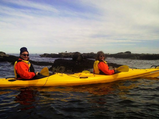 Kaikoura Kayaks: Up close & personal with the locals