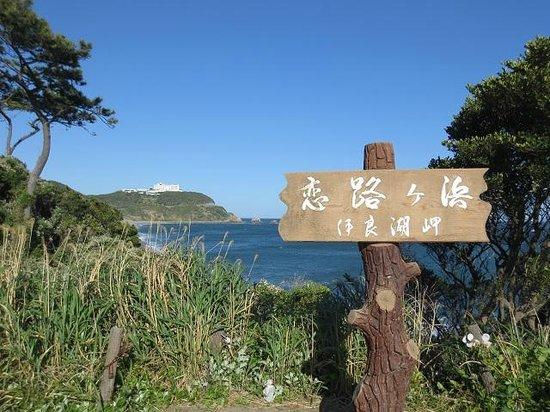 Koijigahama : 看板