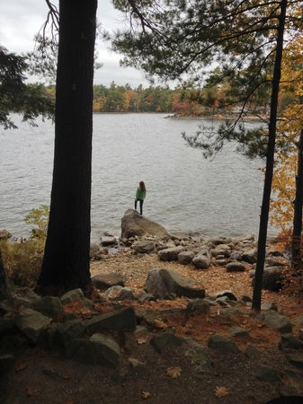 Point Sebago: view from park home