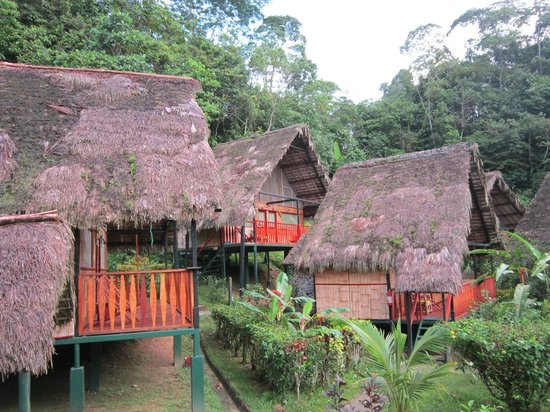 Yacuma Ecolodge : these are the buildings where are rooms