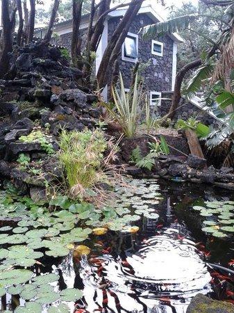 Aldeia da Fonte Nature Resort: relaxing area