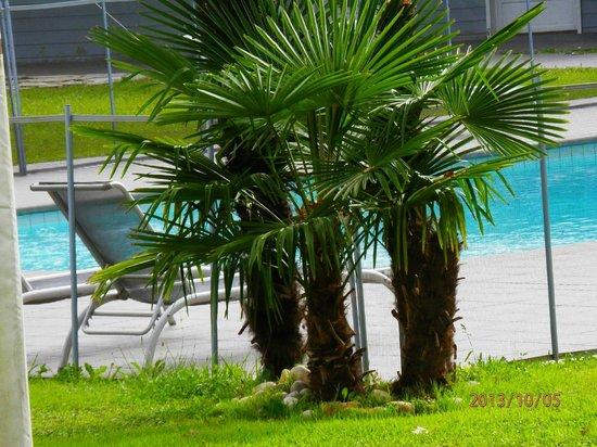 Quality Hotel Le Cervolan Chambery - Voglans: zoom sur piscine et abords