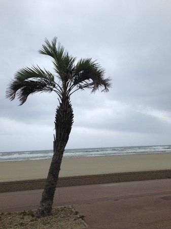 Hotel La Fregate : On the beach, before the storm