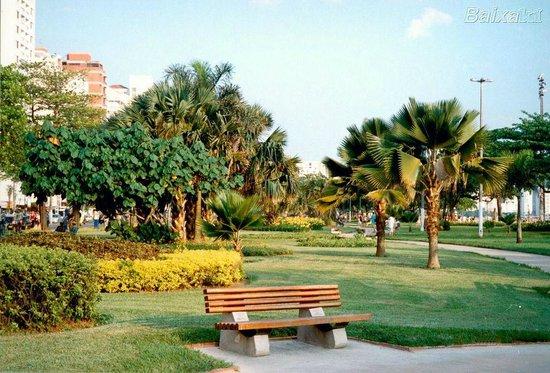 Beach Edge Gardens : Jardins