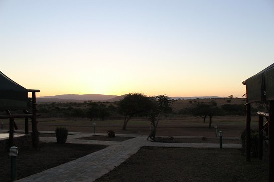 Zulu Nyala Heritage Safari Lodge: View from our Tent