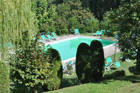 Villa Campestri Olive Oil Resort: The pool - so nicely located down the hill amongst the trees.