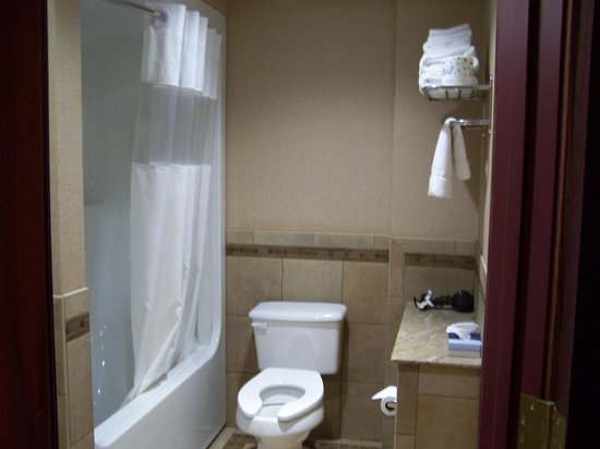 Island Resort & Casino: Wish toilet had a lid; nice granite shelf next to toilet for travel bags.