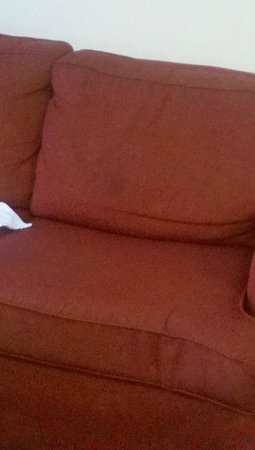Extended Stay America - Jackson - East Beasley Road: Nasty stains on the sofas