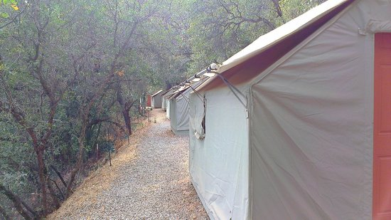 Yosemite Bug Rustic Mountain Resort: Clean and well maintained tent cabin