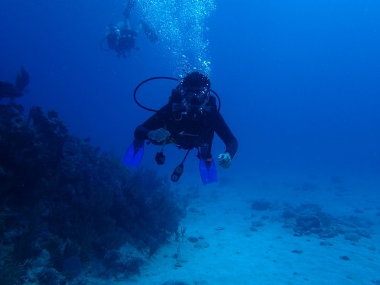 Easy Chango: Us exploring the reef on dive 3