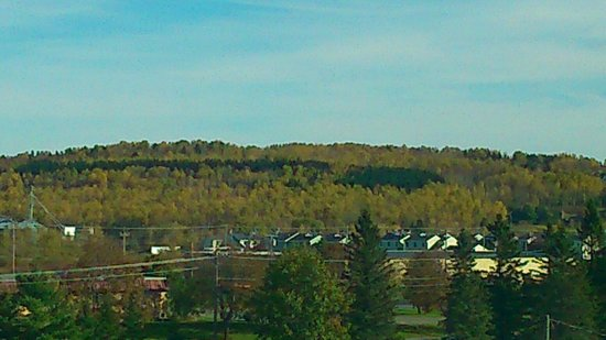 Hampton Inn Presque Isle: Nice view from room 411