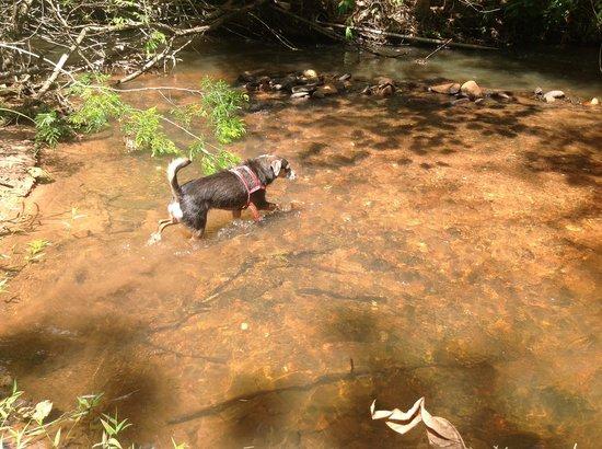 Sitio Roda D'Agua: Banho de rio