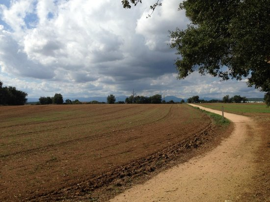 Hotel Ciutat de Girona : Small gauge railroad turned into cycling path to the coast