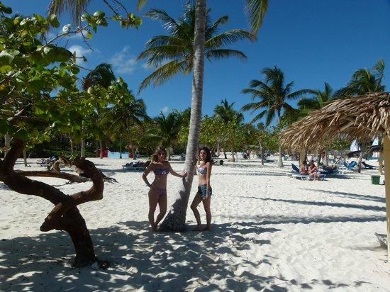 Playa Esmeralda: Playa del Hotel